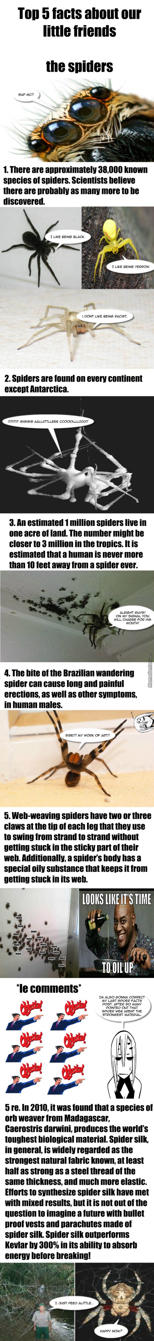 Heres Five Another Spider Facts.