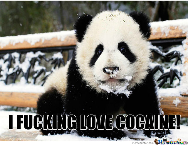He's An Adorable Cocaine Lover.