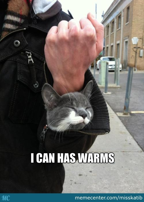 Hey, It's Chilly Out There