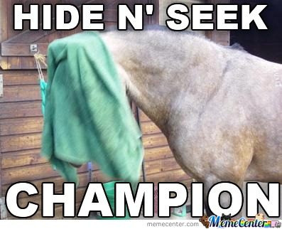 Hide N' Seek Champion