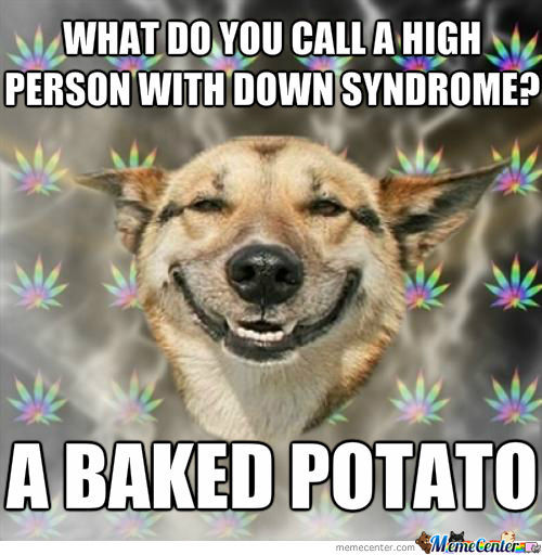 High Dog Wise Words