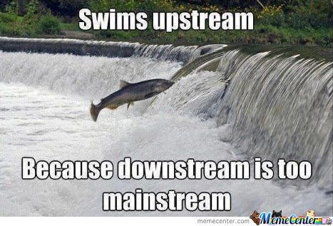Hipster Fish