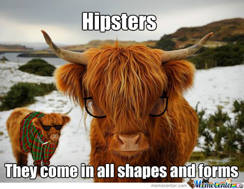 Hipsters... They Look Like Cows
