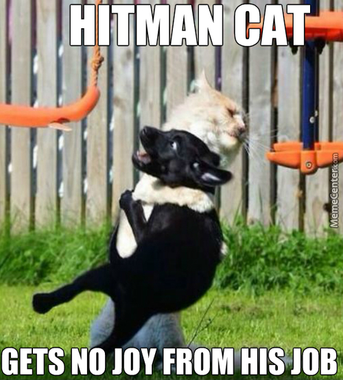 His Catnip Addiction Forced Him To Take These Kind Of Jobs