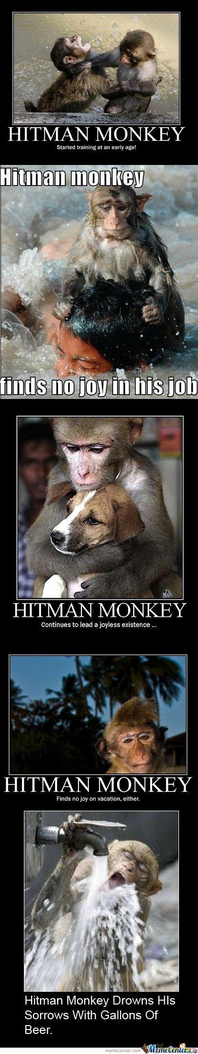 Hitman Monkey Is Sad