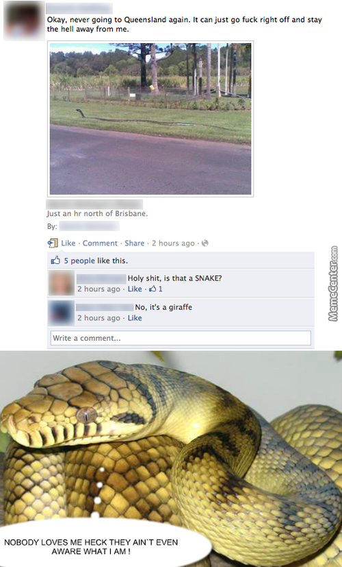 Humanity Got No Love For Snakes Nor It Has Any Knowledge About Them!