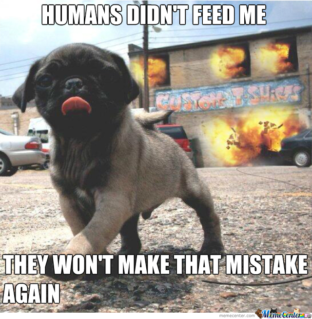 Humans Didn't Feed Me!
