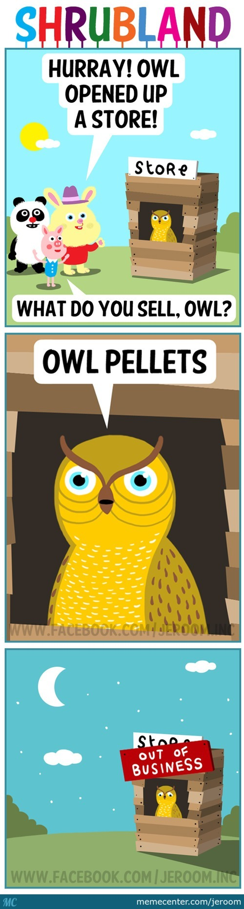 Hurray! Owl Opened Up A Store!