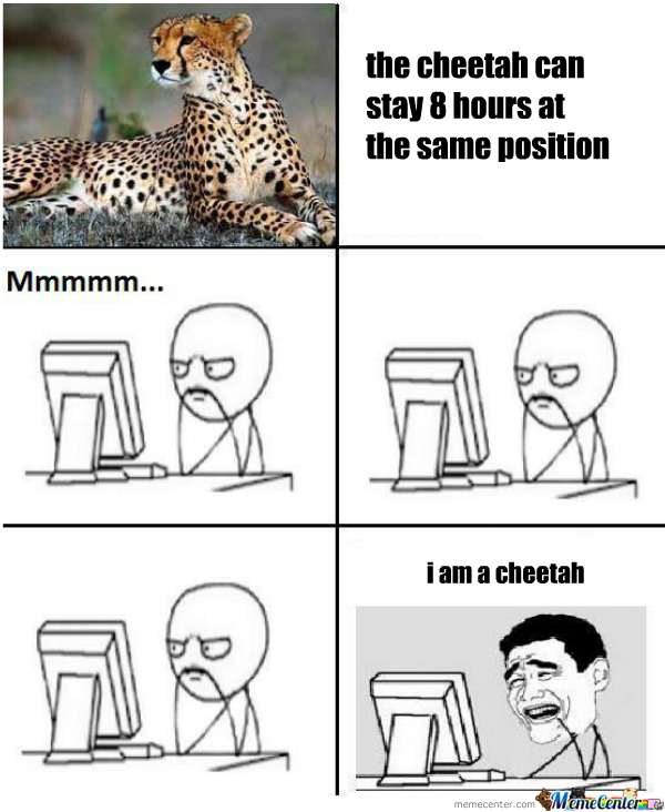 I Am A Cheetah