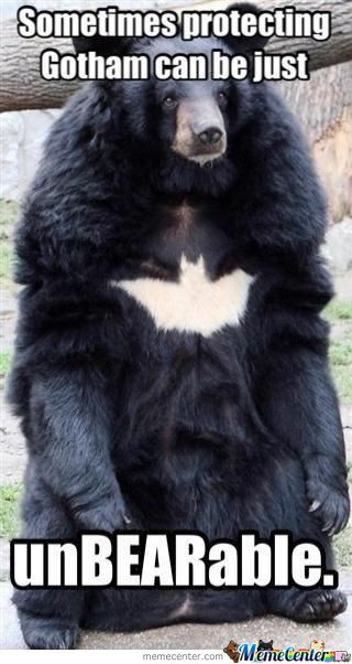 I Am Batbear!