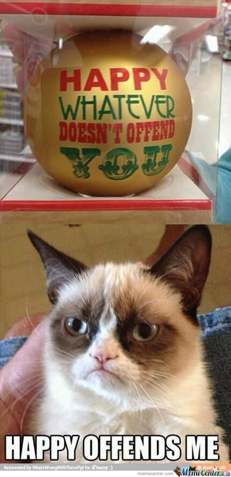 I Am Offensive And I Find This Grumpy