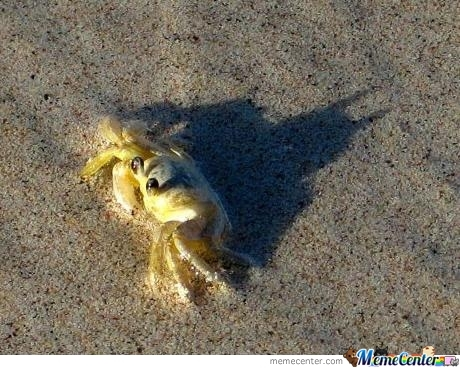 I Am The Crab That Gotham Needs