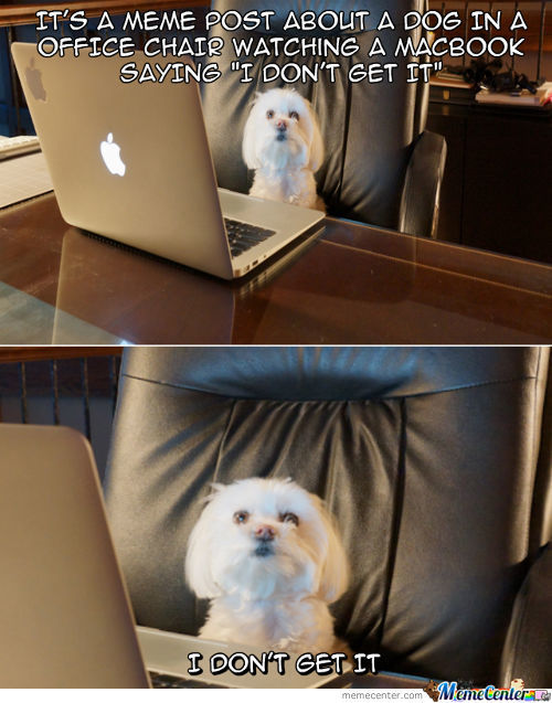 I'll Be Executive And You'll Be Dog