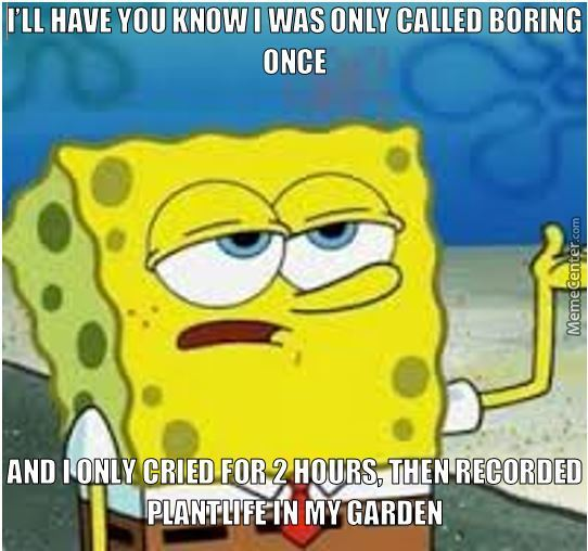 I'll Have You Know I Was Only Called Boring Once By 420