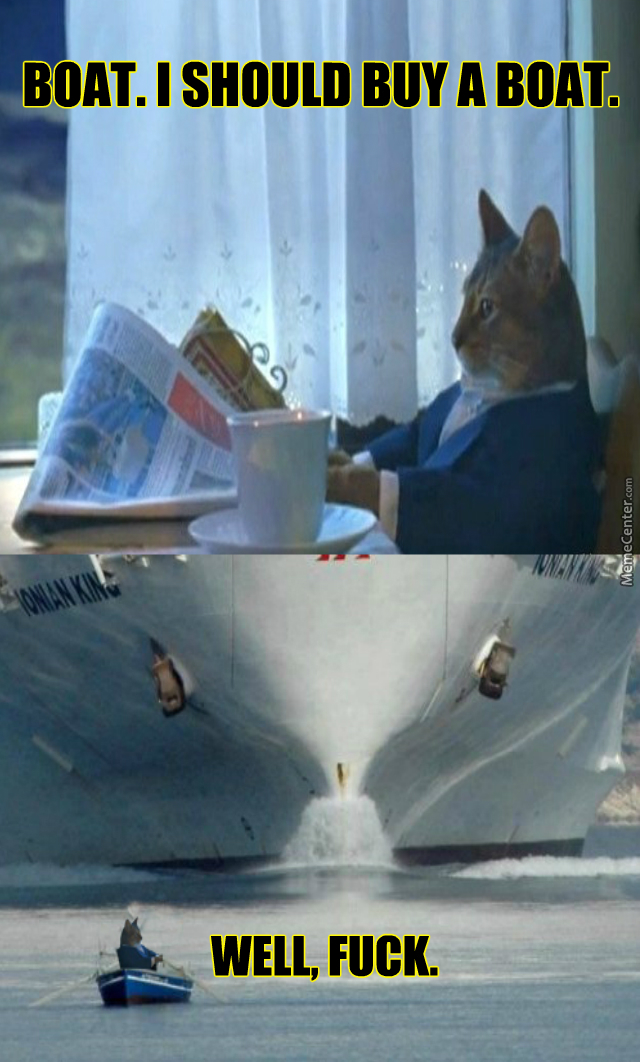 I'm A Cat, How Did I Even Buy This Boat In The First Place?