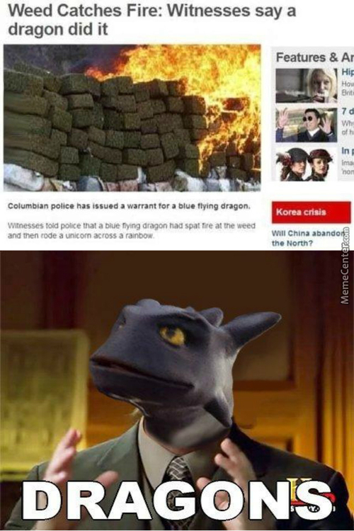 I'm Not Saying It Was Dragons But It Was Dragons