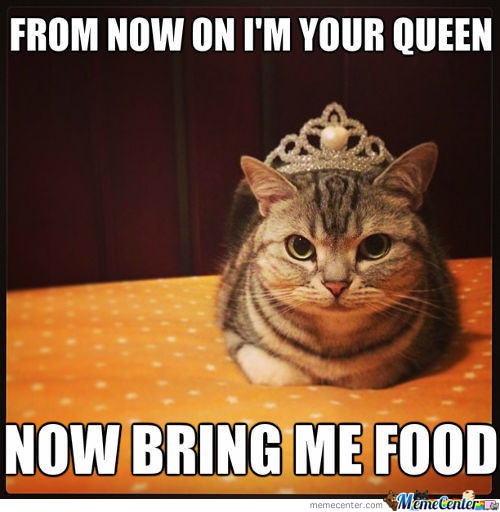 I'm Your Queen Now