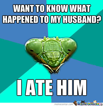 I Ate My Husband