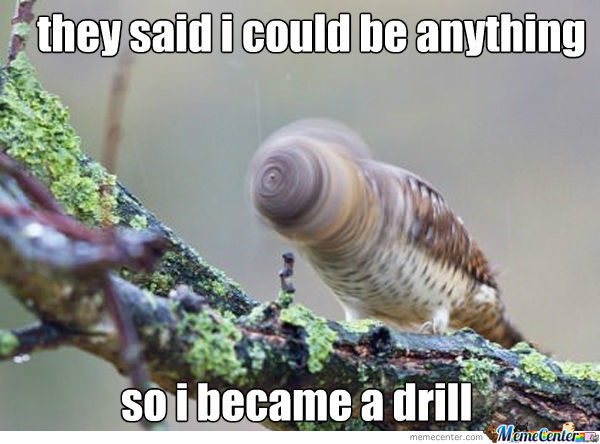 I Became A Drill