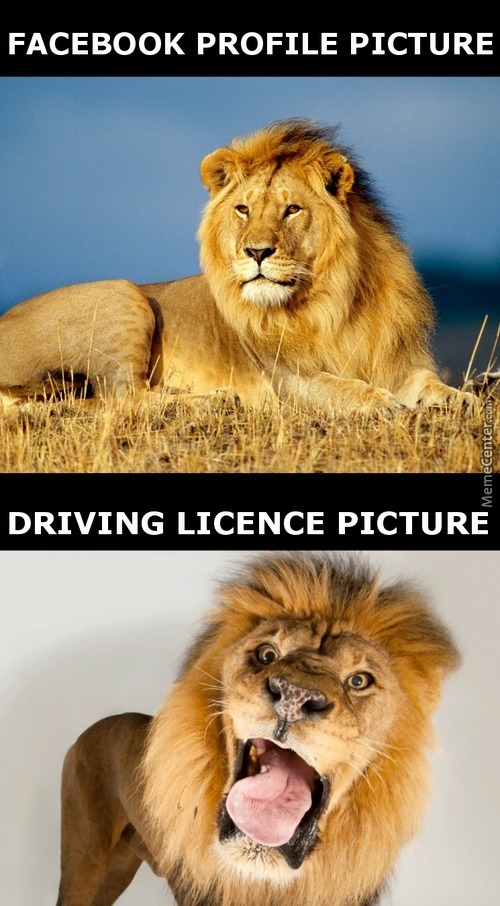 I Can't Be The Only One With A Horrible Driving Licence Picture