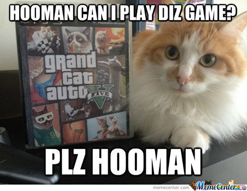 I Can Haz Teh Game Hooman?