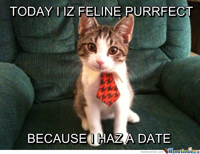 I Don't Know If I Cat Do This!
