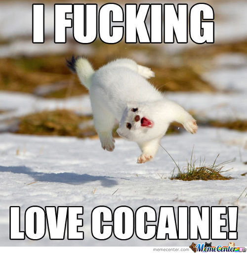 I F***** Love Cocaine!