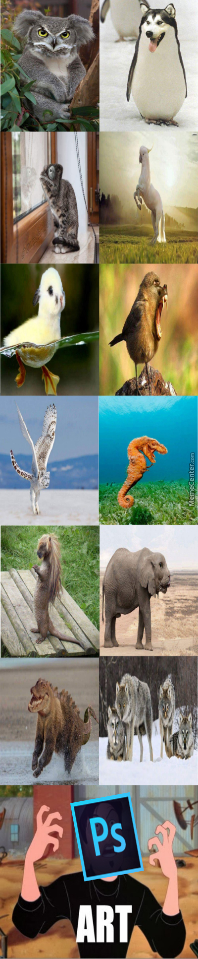 Here Are Some Funny Photoshopped Animals