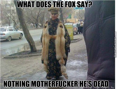 I Finally Know What The Fox Says
