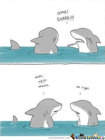 I Forgot How To Shark ....