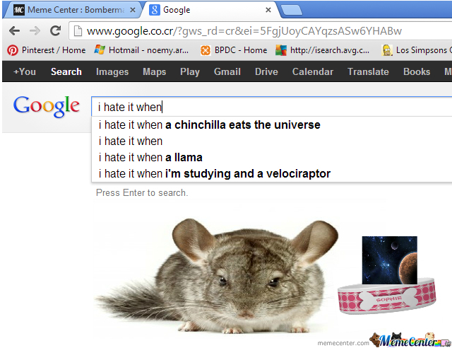 I Hate It When A Chinchilla Eats The Universe