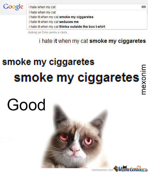 I Hate When My Cat smoke my ciggaretes
