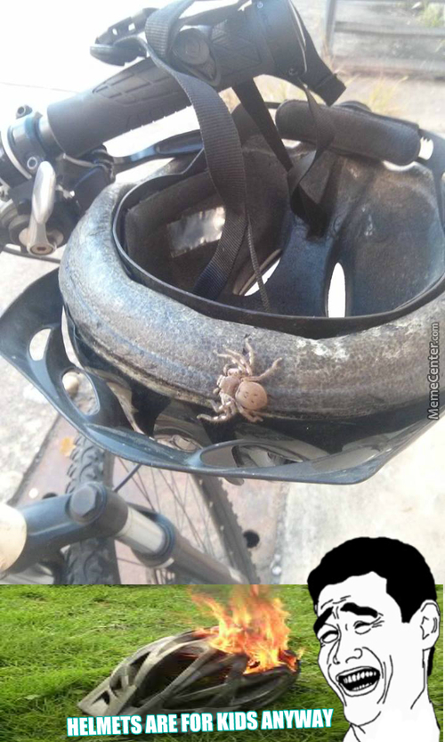 I Have A Pet Spider I Use Like This, It Keeps The Niggas From Stealing My Bike