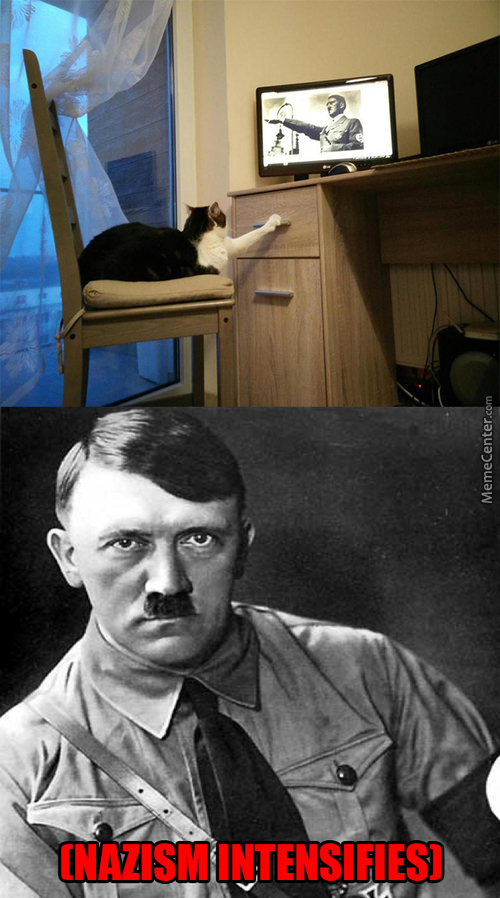 I Knew I Should Have Trusted Cats In The First Place, A. Hitler