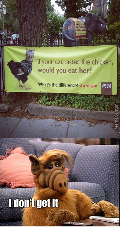 I Love Cats! They Taste Like Chicken.