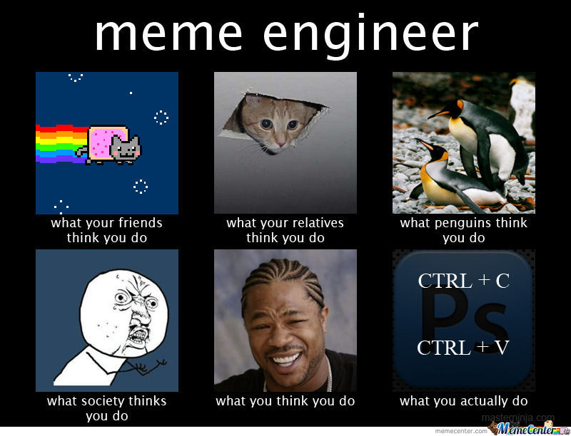 I Major In Meme Engineering