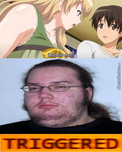 I Need Feminism, Because My Waifu Should Have Equal Rights Too
