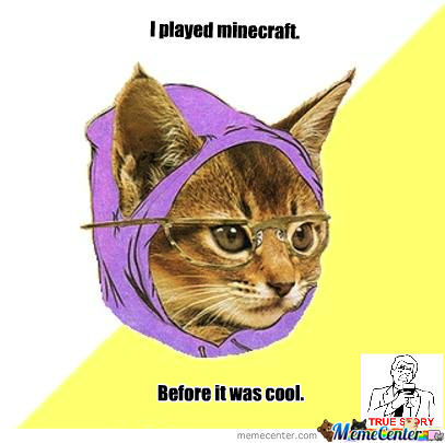 I Played Minecraft