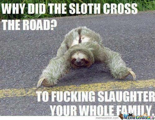 I Really Like Sloths