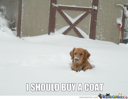I Should Buy A Coat