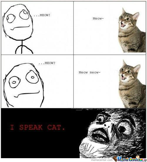 I Speak Cat??!!