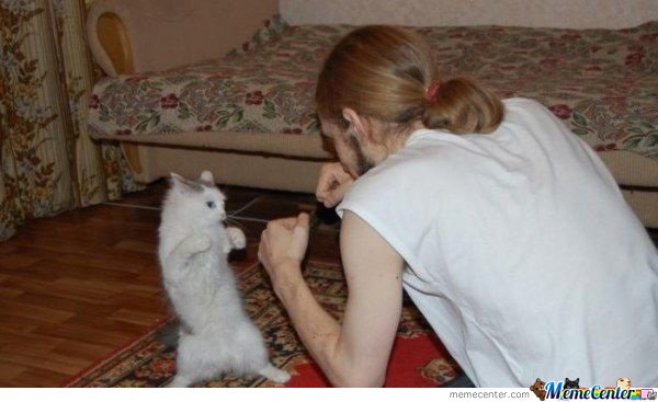 i want to teach my cat this trik