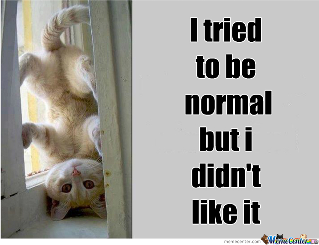 I Was Normal Once