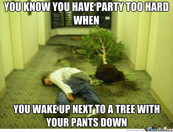 I Was One With The Tree Last Night