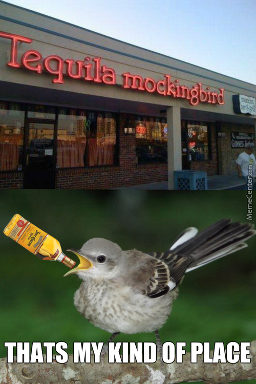 I Would Love To See A Drunk Mockingbird