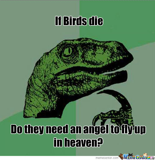 If Birds Die