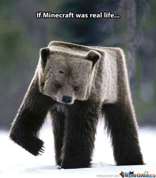 If Minecraft Was Real