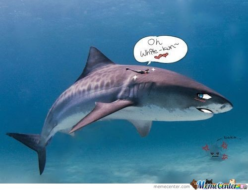 If Sharks Were Japanese