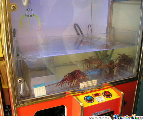 In Japan Prize Grabber Grabs Lobsters!
