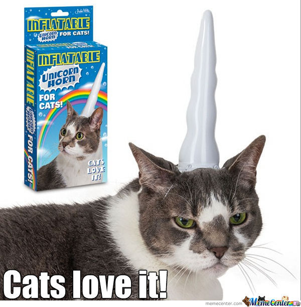 Inflatable Unicorn Cat